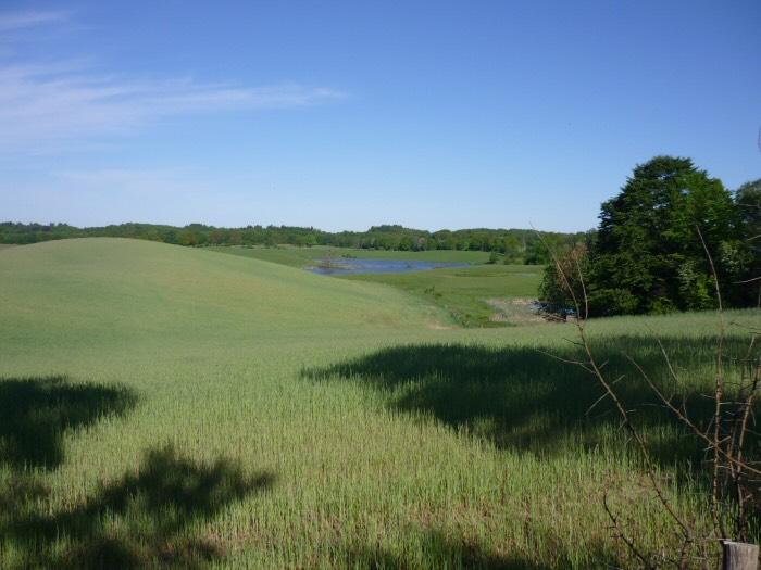 Offroad-Kragle-Polen-terrein